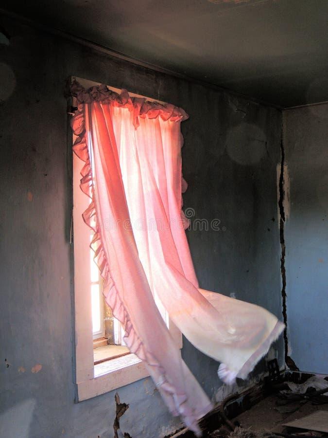 rosa gardiner som in blåser arkivfoto