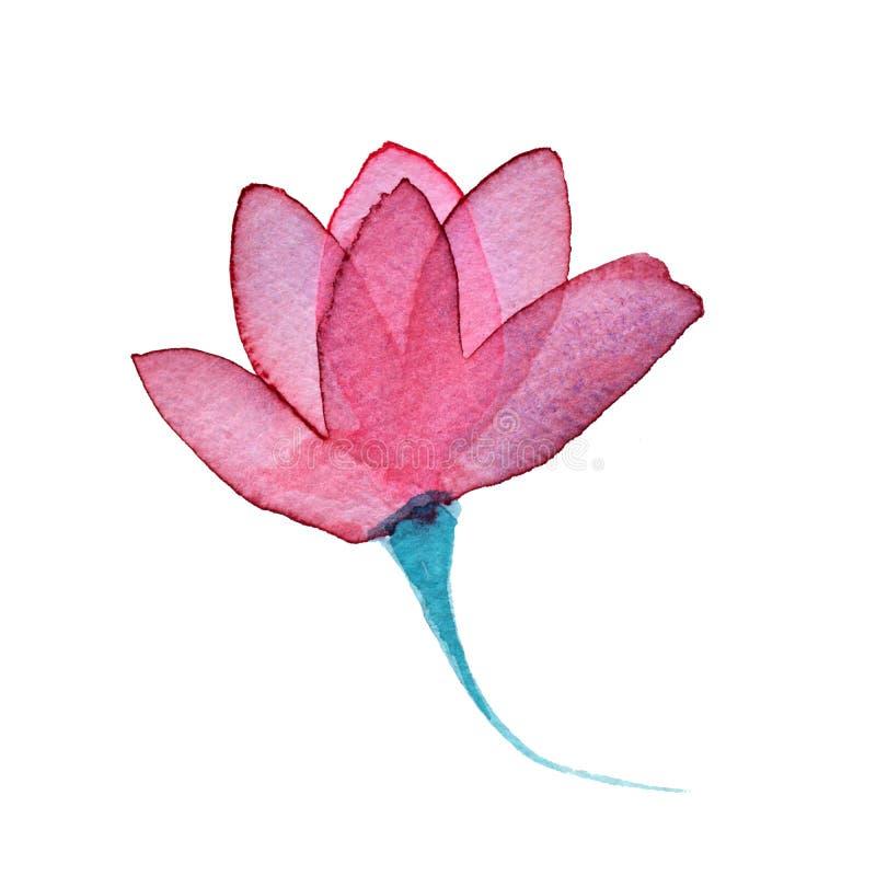 Rosa genomskinlig i lager rosa blomma för vattenfärg på vit bakgrund stock illustrationer