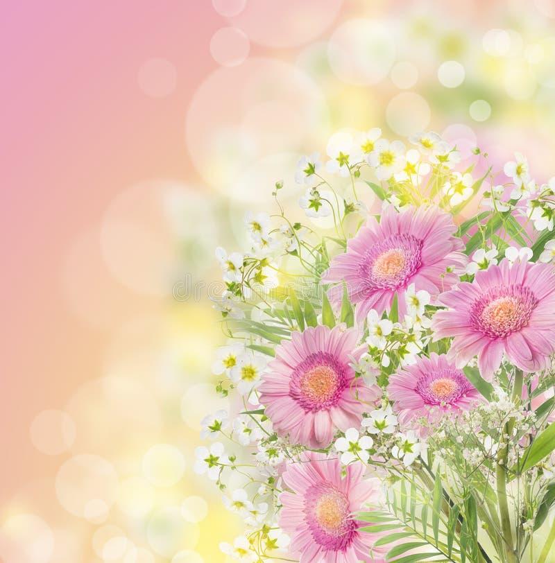 Rosa Gerberas blüht Bündel, Blumen-bokeh Hintergrund lizenzfreie stockfotos