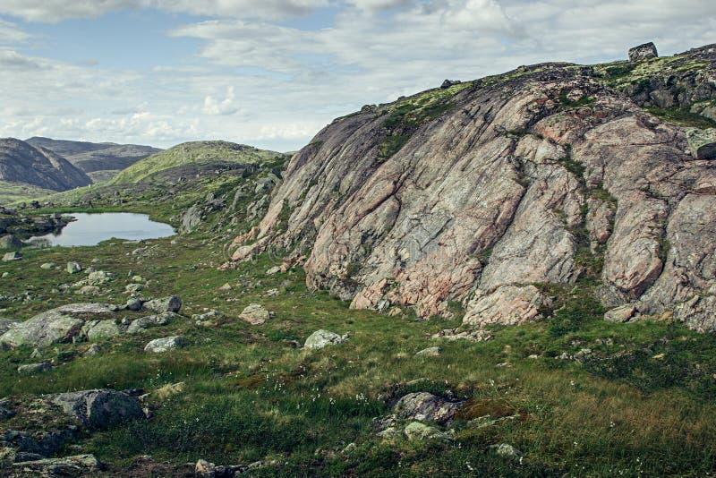 Rosa Granitberg und -Alpenwiesen am sonnigen Tag stockfoto
