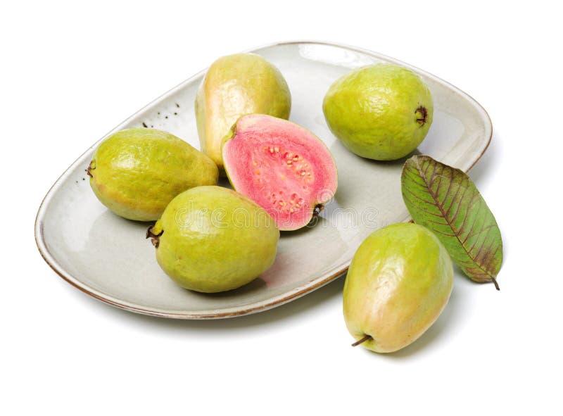 Rosa guava fotografering för bildbyråer