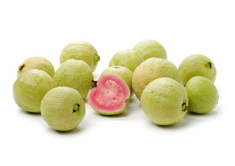 Rosa guava arkivfoto