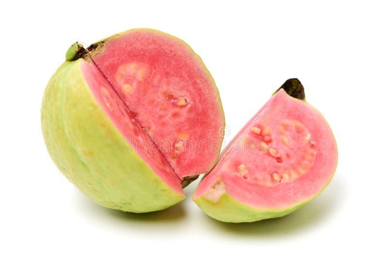 Rosa guava royaltyfri fotografi