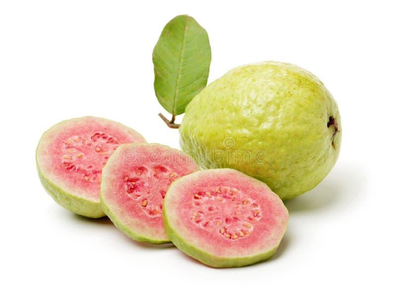 Rosa guavafrukt royaltyfria bilder