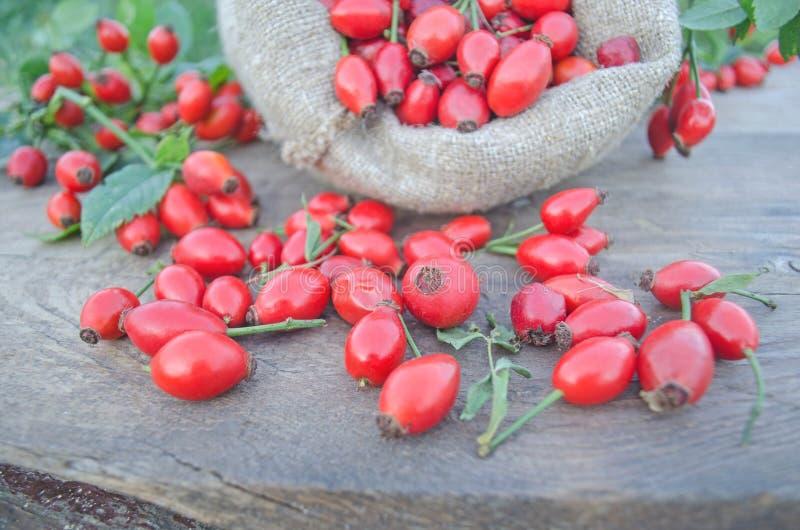 Rosa höftfrukt i en säckvävpåse över en träbakgrund royaltyfri bild