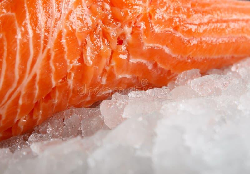 Rosa ha colorato la bistecca di pesci, l'alimento di estate con vino e la marinata del limone fotografie stock