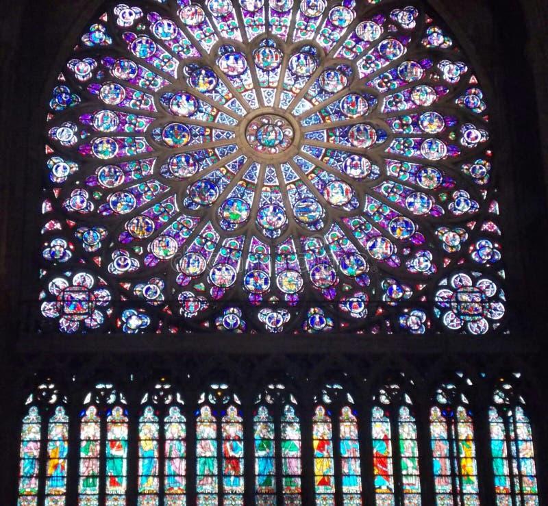 Rosa ha sforzato la finestra di glas della cattedrale Notre Dame immagini stock