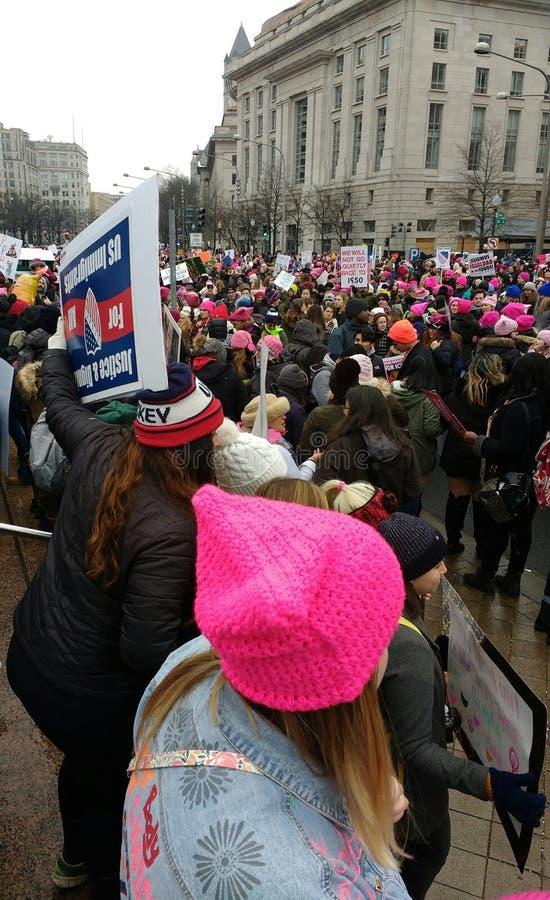 Rosa hatt, kvinnors mars, Washington, DC, USA fotografering för bildbyråer