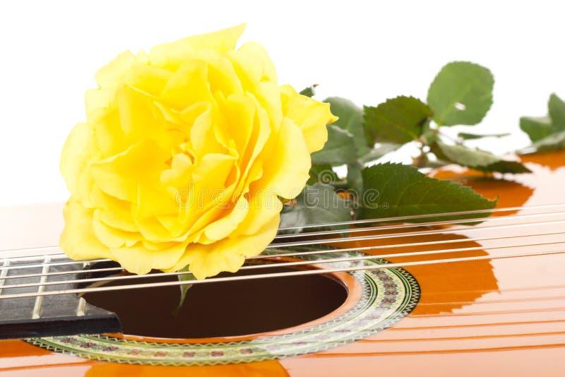 Hermoso subió en la guitarra fotos de archivo libres de regalías