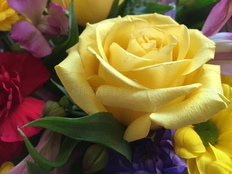 Rosa hermosa del amarillo incluida en un ramo fotografía de archivo