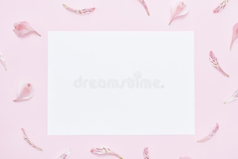 Rosa Hintergrund, weißes Blatt Papier auf der Mitte Feld von Florida stockfoto