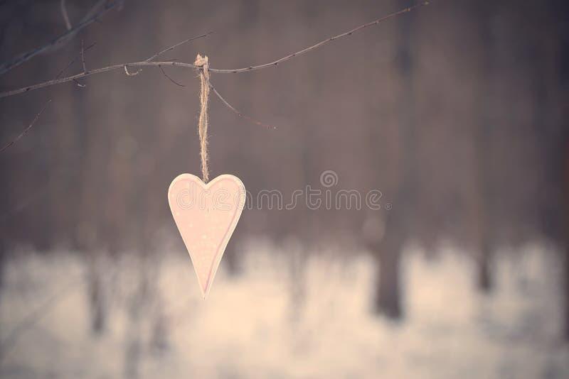 Rosa hjärtaform som hänger en filial royaltyfria foton