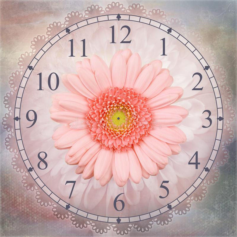 Rosa isolerad klockabakgrund för gerbera blomma stock illustrationer