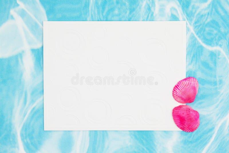 Rosa Kammmuschelmuscheln mit einer weißen Grußkarte des freien Raumes stockbilder