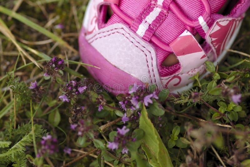 Rosa Kinderschuh auf rosa Blumen stockfoto
