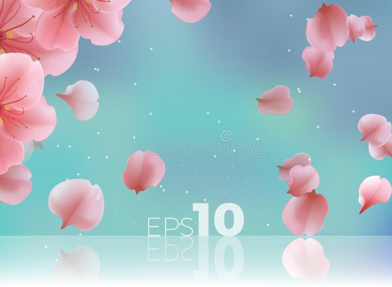Rosa Kirschblüte-Abfall der Blumenblätter zum Boden stock abbildung