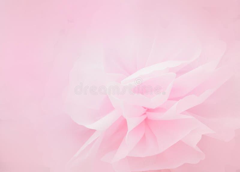 Rosa kronbladblomma i mjuk stil royaltyfri bild