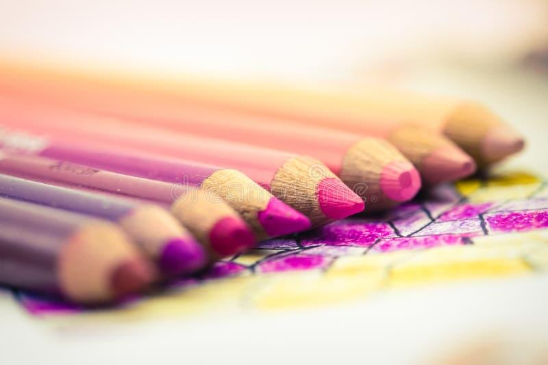 Rosa kulöra blyertspennor ställde upp i en lutning arkivfoto
