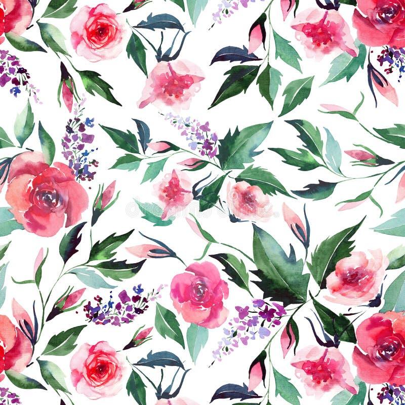 Rosa lila för blom- eleganta underbara färgrika för rosa färgvår för anbud försiktiga vildblommor växt- med knoppar och grönt sid vektor illustrationer