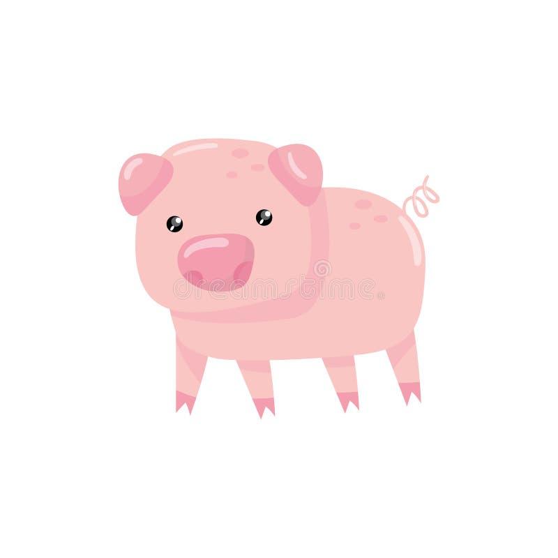 Rosa litet svin med den virvlande runt svansen Lantgårdboskap Tecknad filmtecken av tamdjuret Design för barnbok eller royaltyfri illustrationer