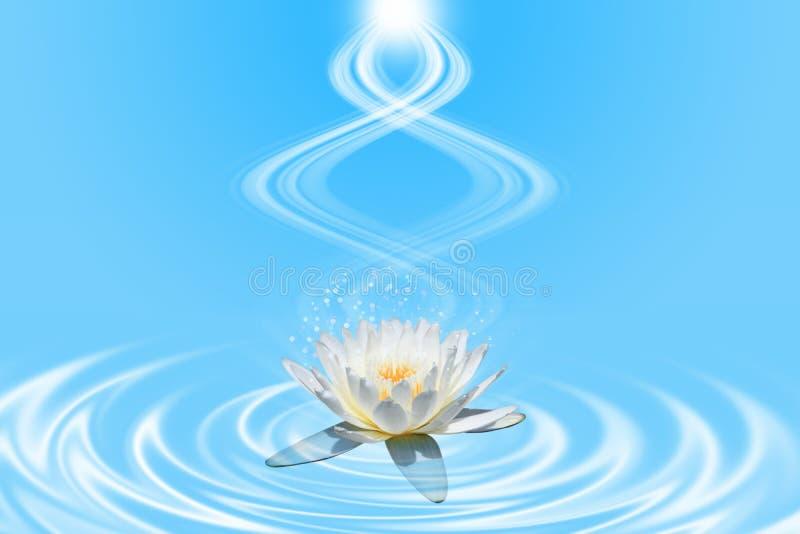 Rosa lotusblomma med spiralt ljus vektor illustrationer