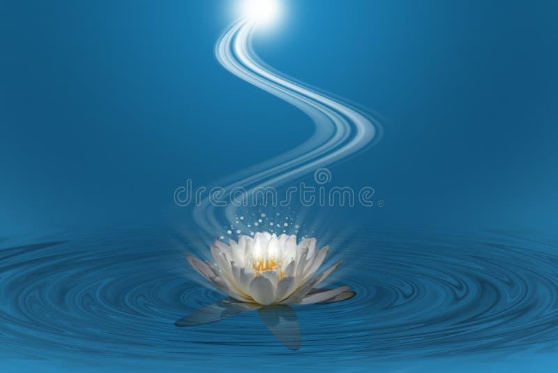 Rosa lotusblomma med spiralt ljus fotografering för bildbyråer