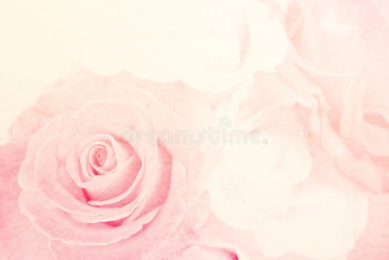 Rosa macia da cor na textura do papel da amoreira fotos de stock royalty free