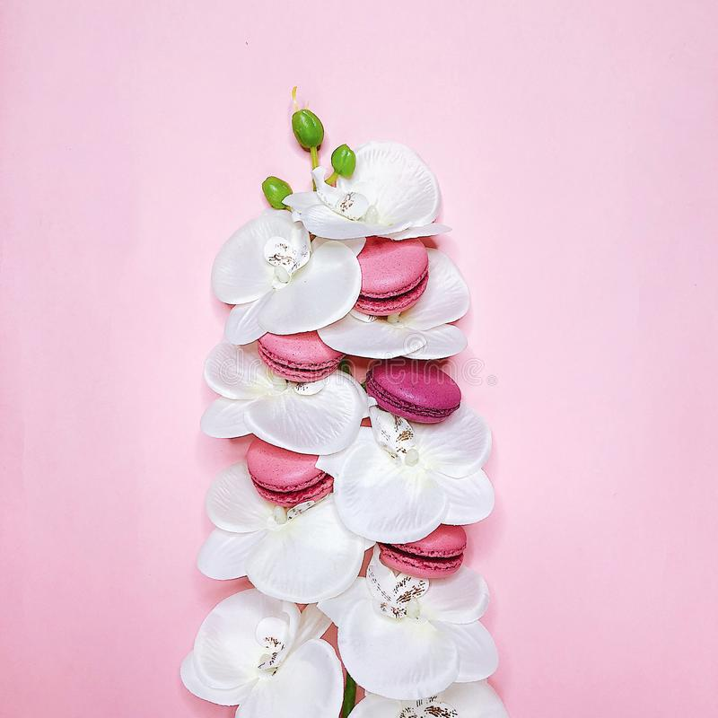 Rosa Makronen auf rosa Hintergrund mit Blumen stockfoto