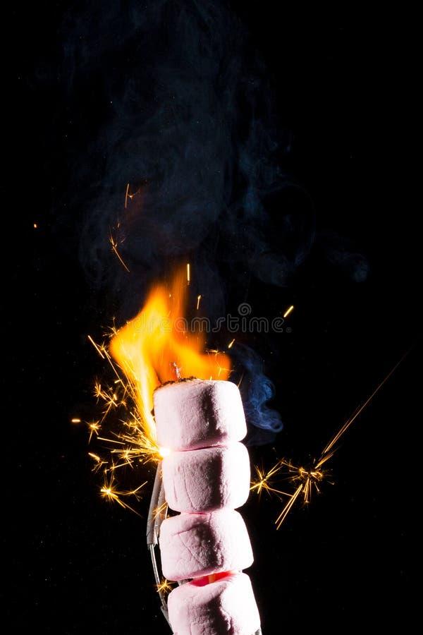 Rosa marshmallower på brand arkivfoto