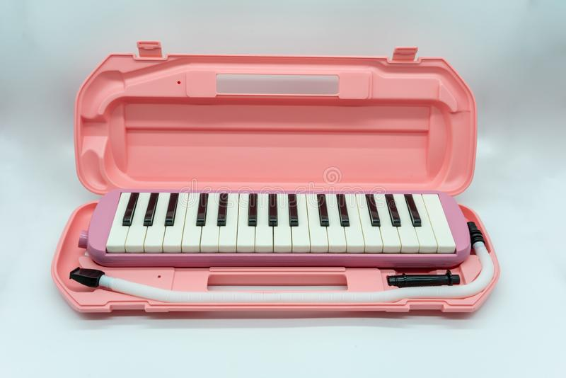 Rosa musical melodian con el estuche de pl?stico duro aislado en blanco foto de archivo libre de regalías