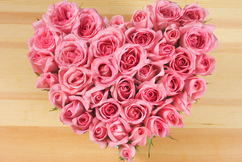 Rosa na forma do amor imagens de stock royalty free
