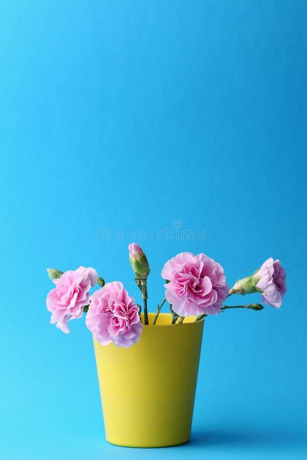 Rosa nejlika i gul vas royaltyfri fotografi