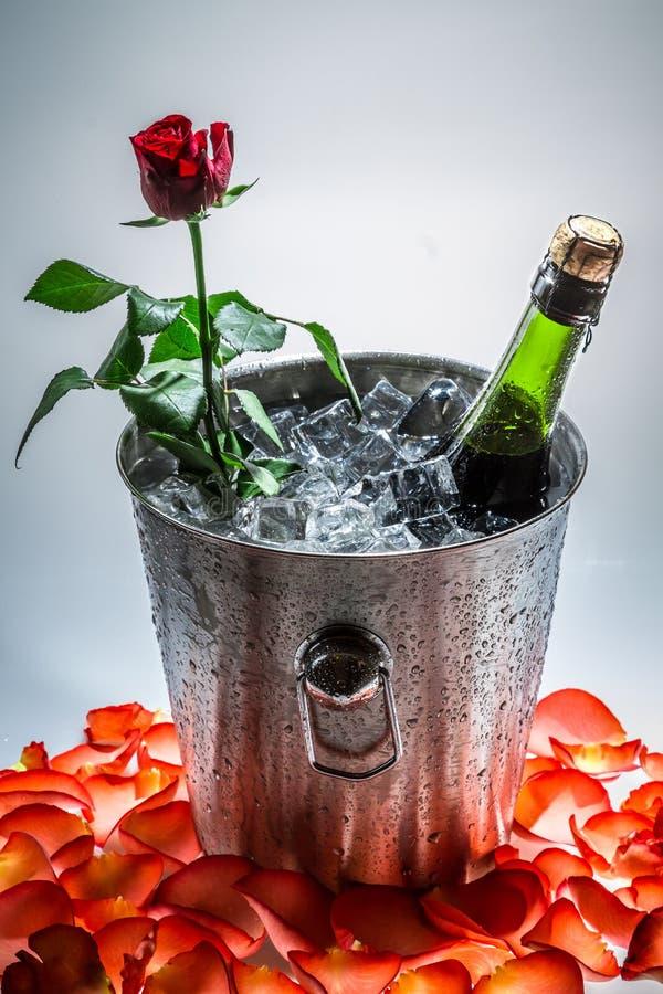 Rosa no gelo - frio com a garrafa do champanhe imagens de stock royalty free