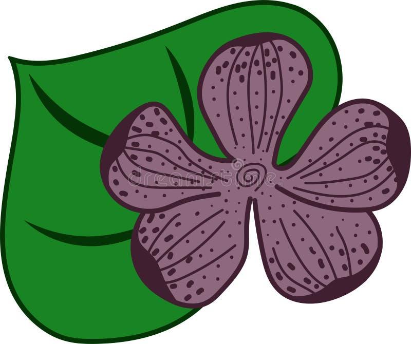 Rosa och purpurfärgad orquideablomma med ett blad royaltyfri illustrationer