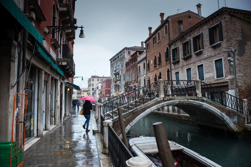 Rosa paraply nära bron royaltyfria bilder