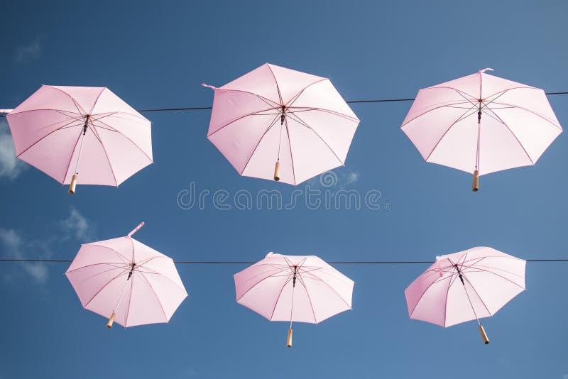 Rosa paraplyer arkivfoton