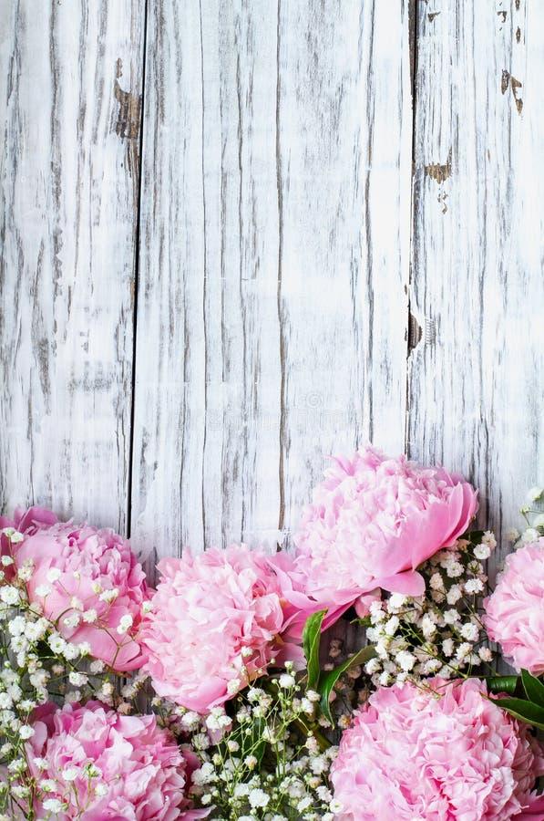Rosa Peonies und Babys Atemblumen über einem weißen rustikalen Holzboden stockfotos