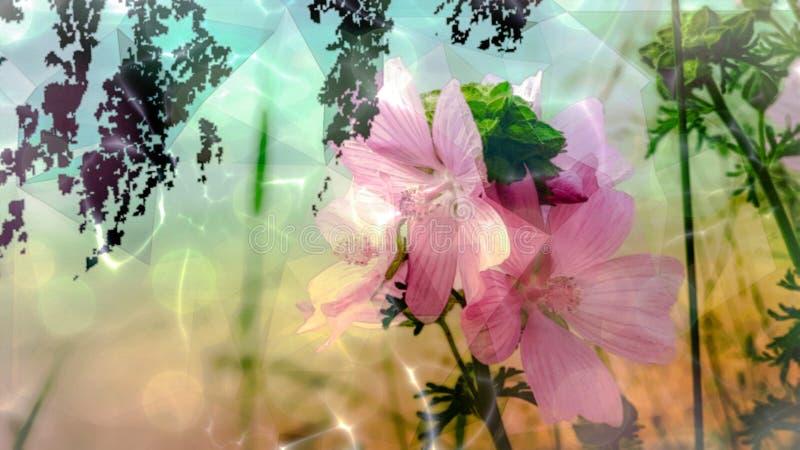 Rosa piena: Triangolo dell'illustrazione, siluette frondose in tonalità del rosa, rosa e verde fotografie stock libere da diritti