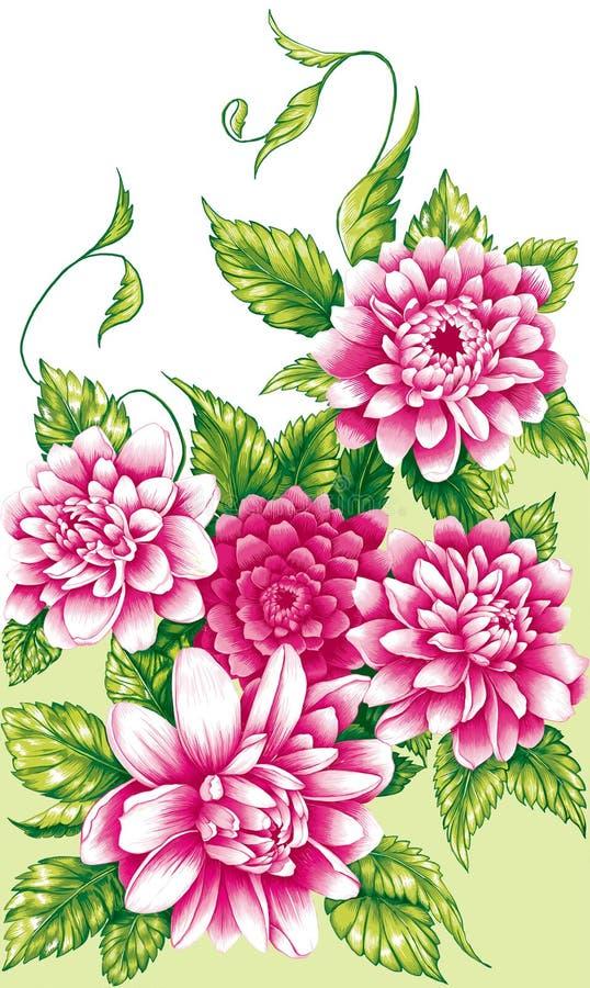 Rosa pionblommor vektor illustrationer