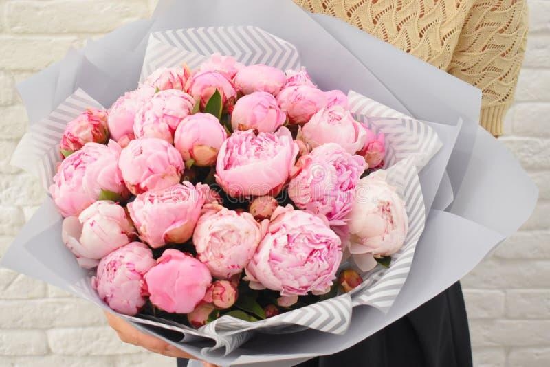 Rosa pioner för härlig förälskelse i stilfullt floristic emballage royaltyfria foton