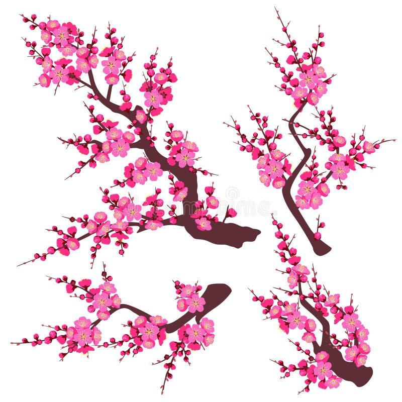 Rosa Plum Blossom Branch Set lizenzfreie abbildung