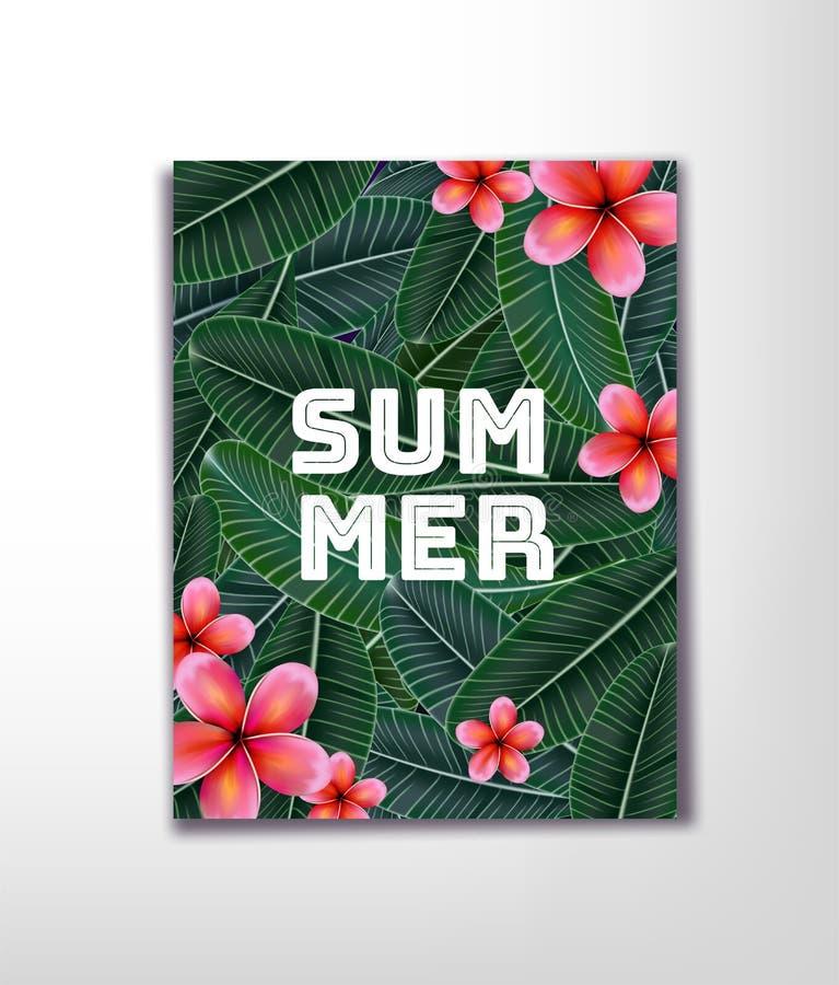 Rosa Plumaria blomma med kopieringsutrymme, sommartid lyckliga ferier stock illustrationer