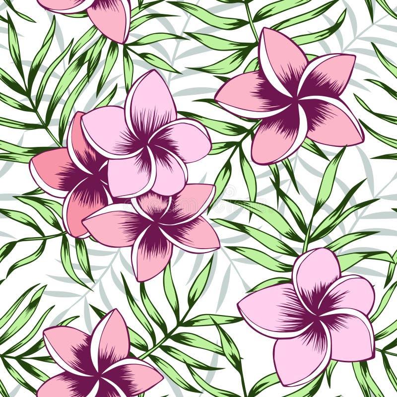 Rosa Plumeria und nahtloses Muster der Palmblätter stockfotos