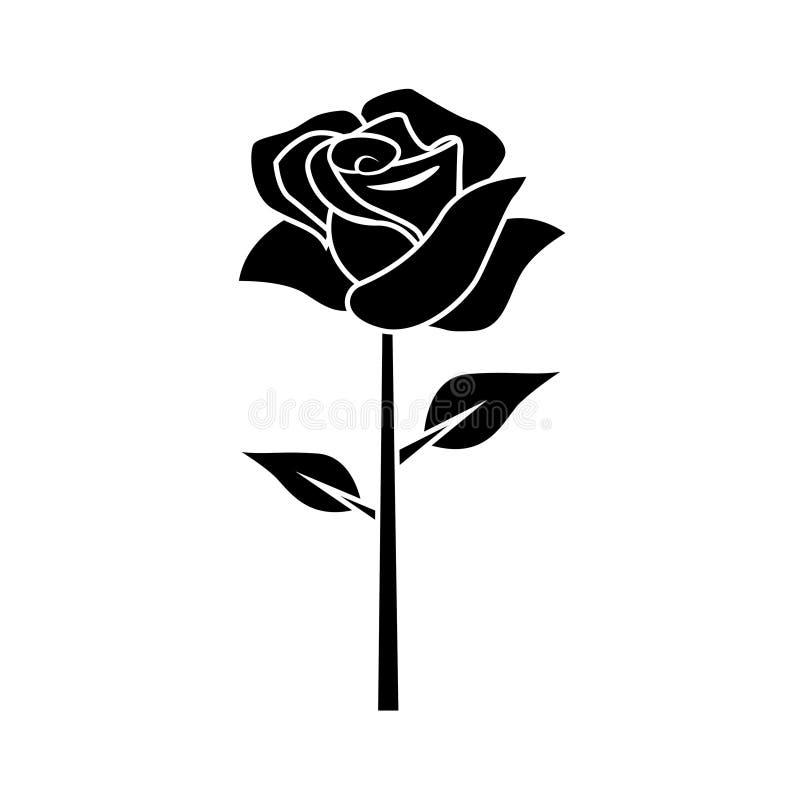 Rosa preta lisa em um fundo branco ilustração royalty free