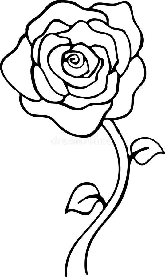 Rosa preto e branco ilustração royalty free