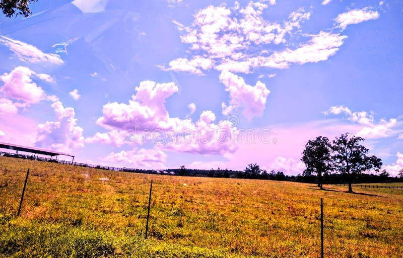 Rosa purpurfärgade himlar för N arkivfoton