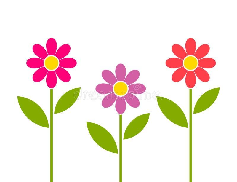 Rosa, rött och purpurfärgat växa för tusenskönablommor i trädgård vektor illustrationer