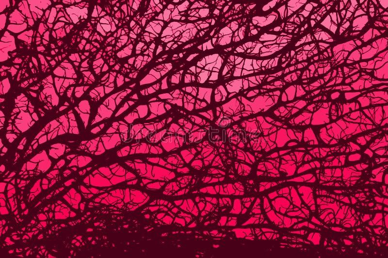 rosa retro för filial royaltyfri illustrationer