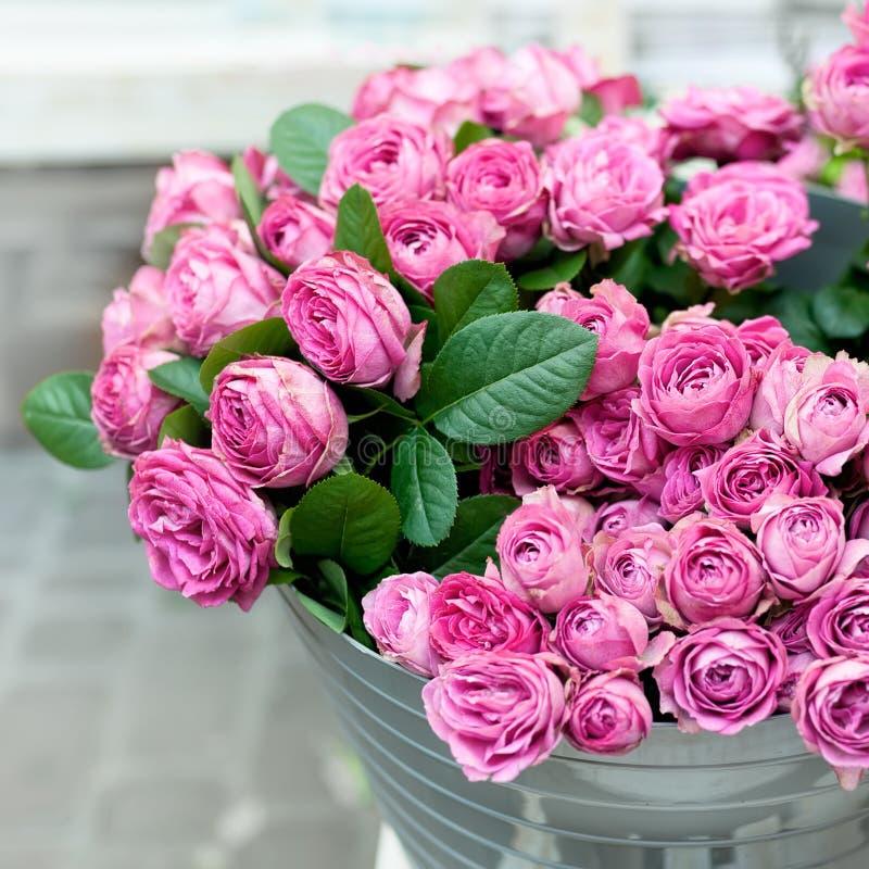 rosa ro för blommor arkivbild