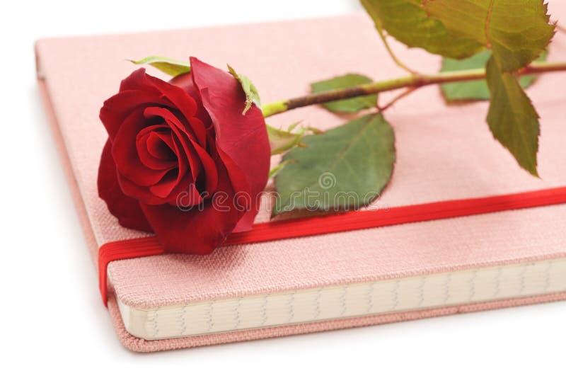 Rosa roja en el cuaderno foto de archivo